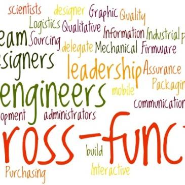 Cross functional leadership in product development